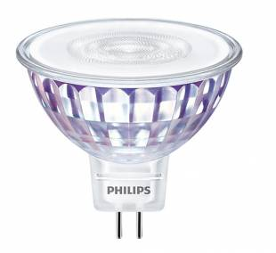 led-zarovka-12v-philips.jpg